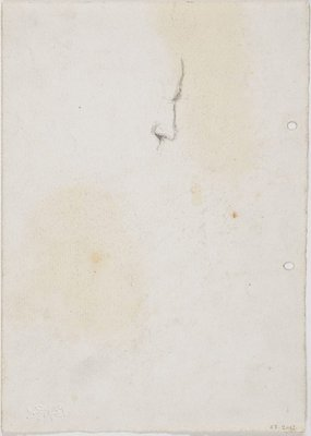 Alternate image of recto: Vyv sketched last night home at Clayfield verso: Vyv's nose by Lloyd Rees