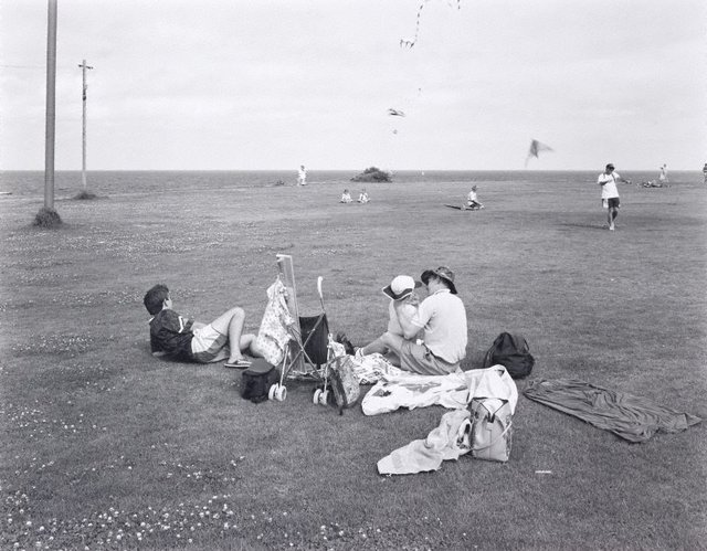 An image of Kite-flying at Trenerry Reserve, Coogee, New South Wales
