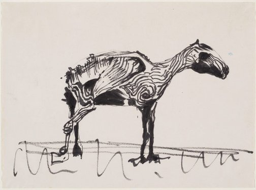An image of Study of a desiccated horse by Albert Tucker