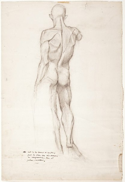 An image of (Standing male nude from behind) by Brett Whiteley