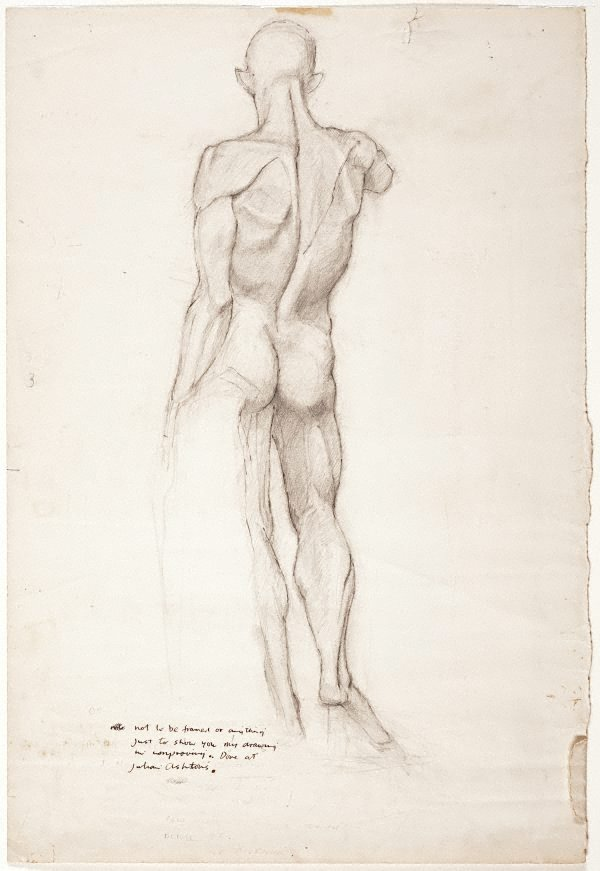 An image of (Standing male nude from behind)