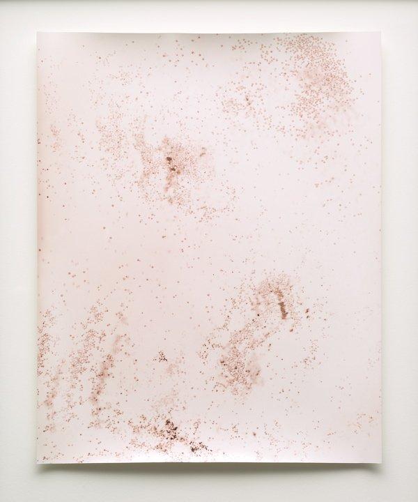 An image of Mustard Mars