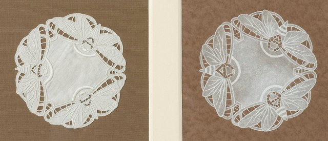 An image of D'oyley with cicada design Design for d'oyley with cicada design