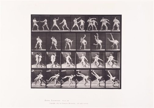 An image of Animal Locomotion - An Electrophotographic Investigation of Consecutive Phases of Animal Movements. Plate 332. Boxing, cross-buttocks [Vol. 5 Males (Pelvis Cloth)] by Eadweard Muybridge