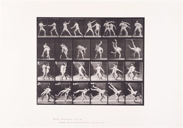 An image of Animal Locomotion - An Electrophotographic Investigation of Consecutive Phases of Animal Movements. Plate 332. Boxing, cross-buttocks [Vol. 5 Males (Pelvis Cloth)]