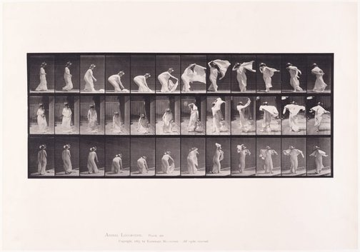An image of Animal Locomotion - An Electrophotographic Investigation of Consecutive Phases of Animal Movements. Plate 233. Lifting shawl, putting it around shoulders and turning [Vol. 6 Females (Semi-Nude & Transparent Drapery) & Children] by Eadweard Muybridge