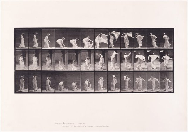 An image of Animal Locomotion - An Electrophotographic Investigation of Consecutive Phases of Animal Movements. Plate 233. Lifting shawl, putting it around shoulders and turning [Vol. 6 Females (Semi-Nude & Transparent Drapery) & Children]