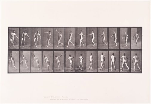 An image of Animal Locomotion - An Electrophotographic Investigation of Consecutive Phases of Animal Movements. Plate 290. Cricket, overarm bowling [Vol. 2 Males (Nude)] by Eadweard Muybridge