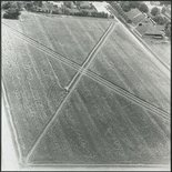 Alternate image of Directed seeding - cancelled crop by Dennis Oppenheim