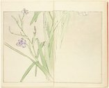 An image of Seitei Kachô Gafu: san-no-maki by Watanabe Seitei
