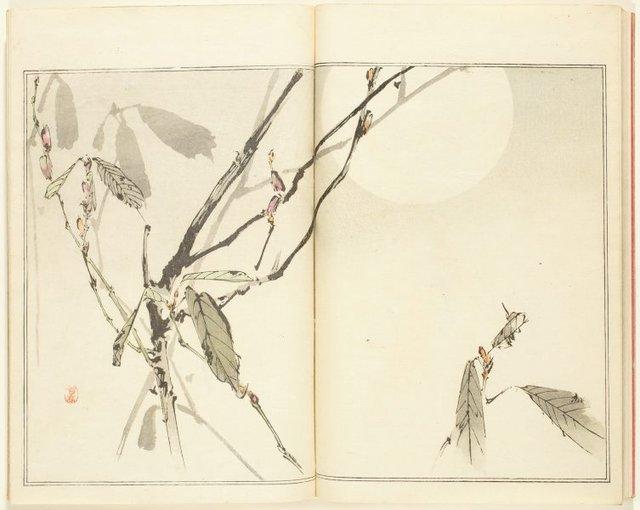 An image of Seitei Kachô Gafu: san-no-maki