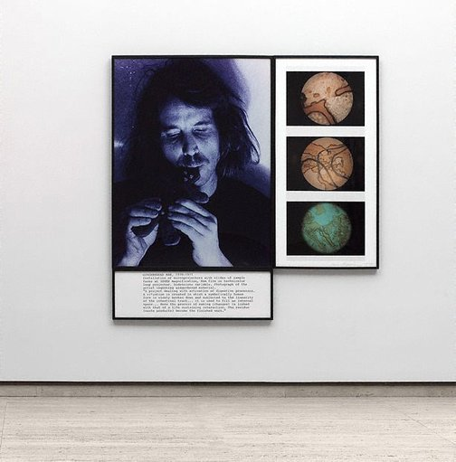 An image of Stills from gingerbread man by Dennis Oppenheim