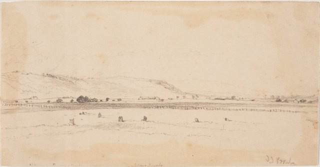An image of Landscape, NSW