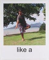 An image of Hey ya! (Shake it like a Polaroid picture) by Tony Albert