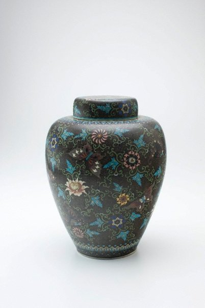 An image of Ginger jar with design of butterflies and flowers by Takeuchi Chubei, Shippo Kaishi