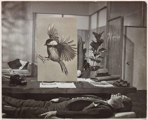 An image of Narrative Flight III by John Stezaker