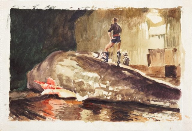 An image of The second whale