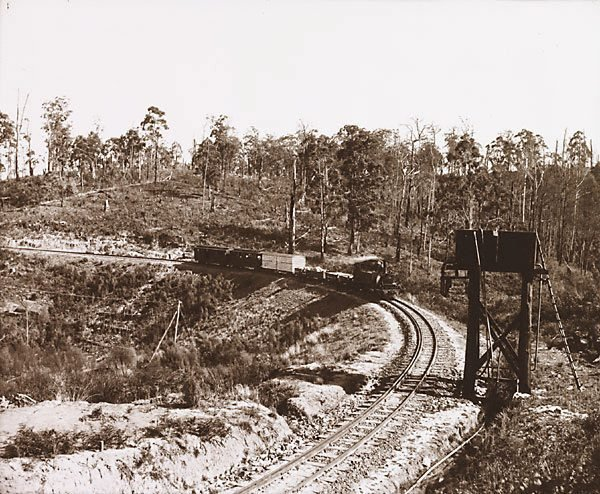 An image of Curve on the Gembrook Railway