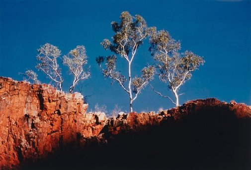 An image of Glen Helen Gorge, Central Australia by Axel Poignant