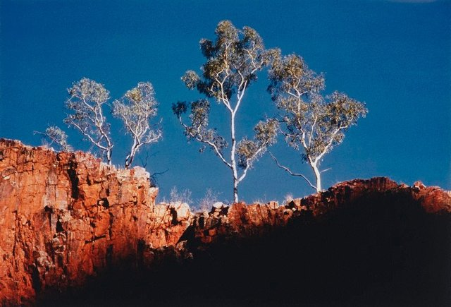 An image of Glen Helen Gorge, Central Australia