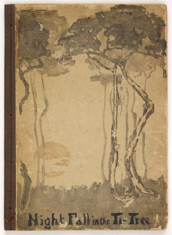 An image of Night fall in the ti-tree