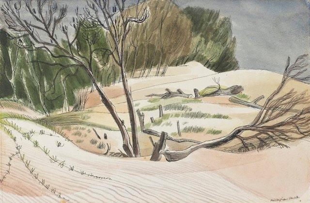 An image of Sandmills (Wheeler's Point, NSW)