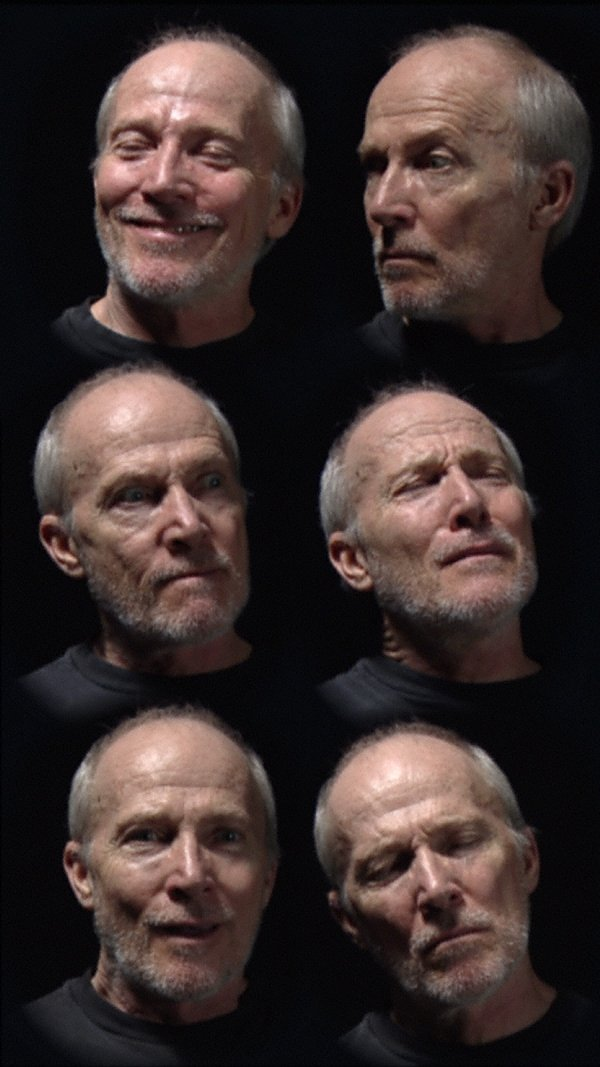 An image of Six heads