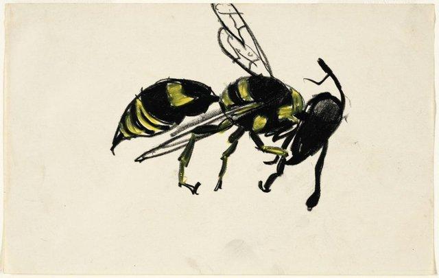 An image of Hornet