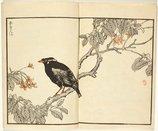 An image of Bairei Hyakuchô Gafu: Chi by Kôno Bairei