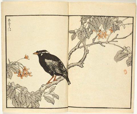 Alternate image of Bairei Hyakuchô Gafu: Chi by Kōno Bairei