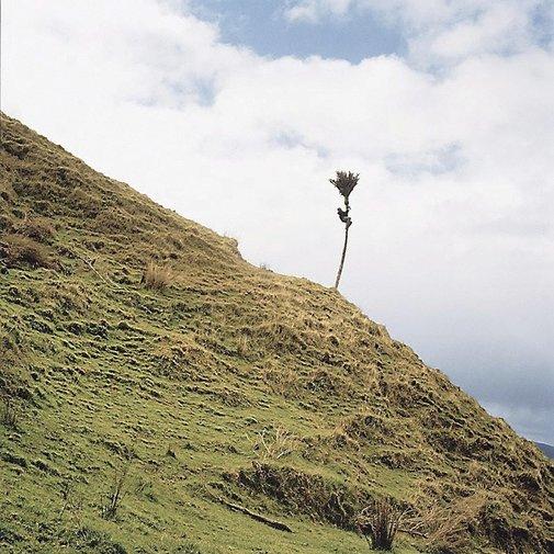 An image of High by Rebecca Ann Hobbs