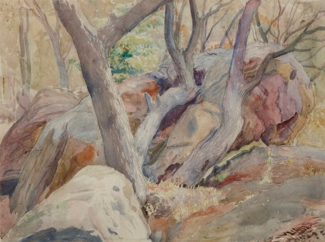 An image of Rocks and trees, Woronora