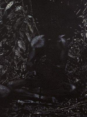 Alternate image of Untitled (FS) by Daniel Boyd