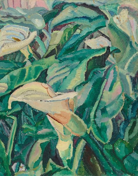 An image of Arums growing by Grace Cossington Smith