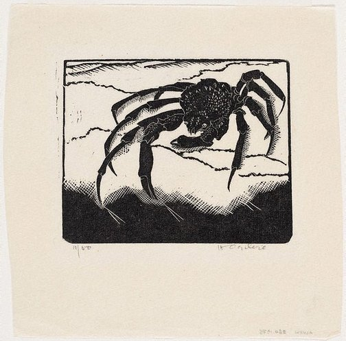 An image of The crab by Helen Ogilvie