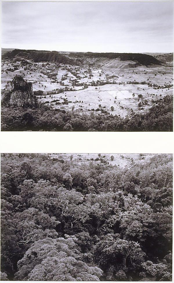 An image of Nimbin Valley