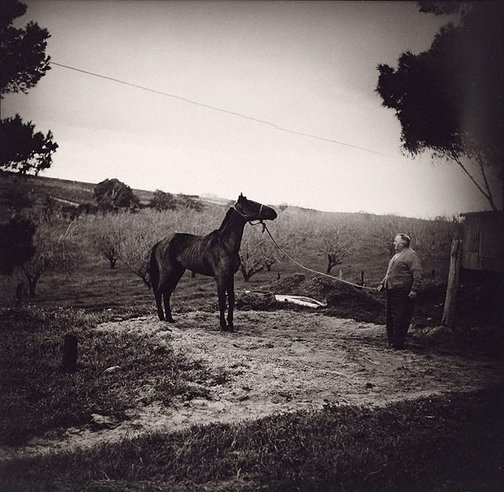 An image of Amos Chaplin, my grandfather, Gilles Plains (South Australia) by Robert McFarlane