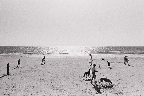 An image of Beach cricket, Somerton, South Australia