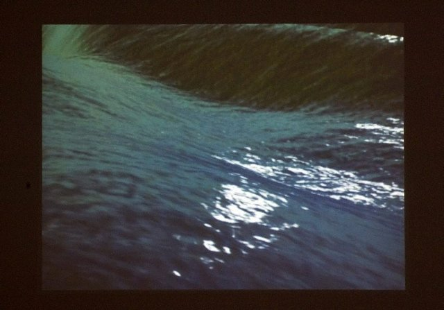 An image of Swell