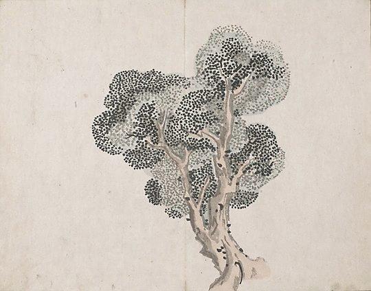 An image of Taigadô Gafu