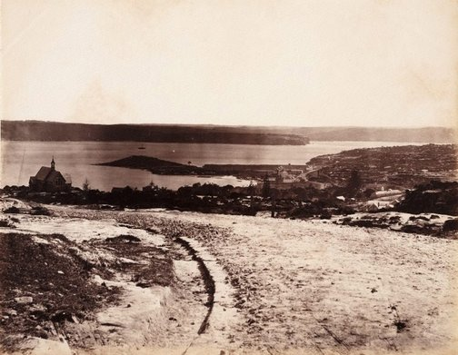 An image of View of New South Head road, looking down towards Watsons Bay by Charles Bayliss