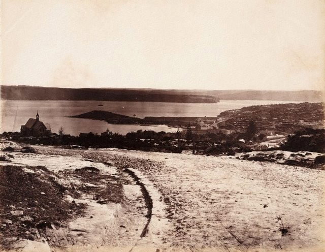An image of View of New South Head road, looking down towards Watsons Bay