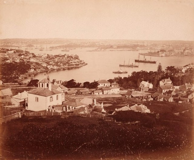 An image of Lower North Shore, Sydney Harbour from Holtermann tower