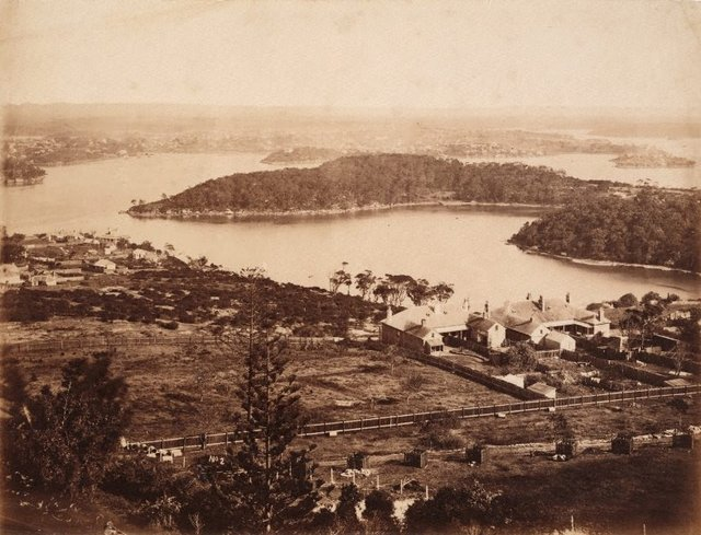 An image of Holtermann's Exposition NSW Scenery no 2