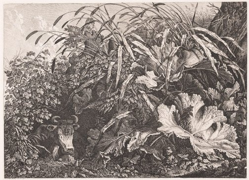 An image of The cow in the reeds by Carl Wilhelm Kolbe
