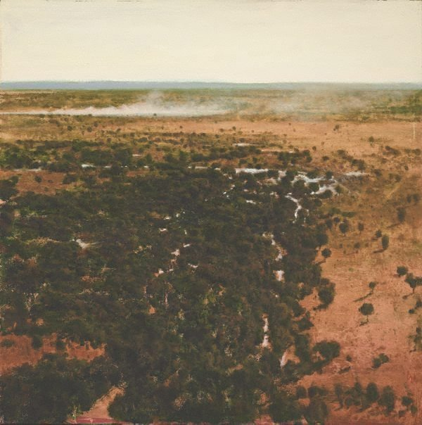An image of South of Alice Springs after good rains