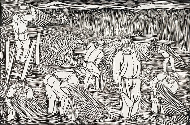 An image of Harvesting