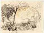 Alternate image of recto: Bush with tree fern (twice) and Sketch of mallee trunks verso: Mallee trunks by Lloyd Rees