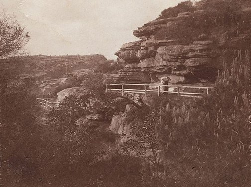 An image of Watson's and Mosman's Bay by Harold Cazneaux