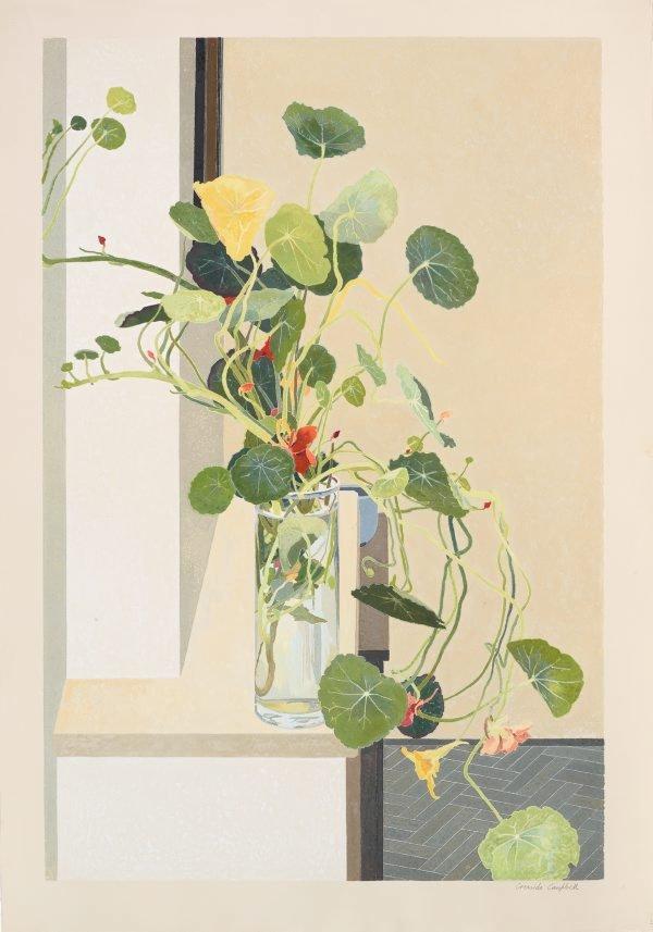 Nasturtiums, (1993) by Cressida Campbell
